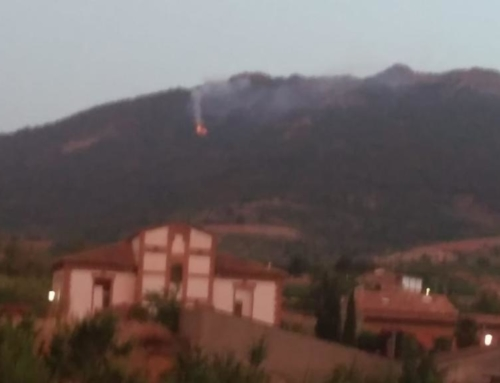 El conato de incendio en la Sierra de Algairén se quedó en un susto
