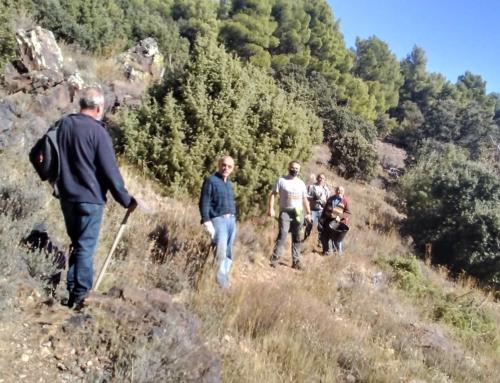 La asociación «El Prau» realiza diversas mejoras en la ruta botánica